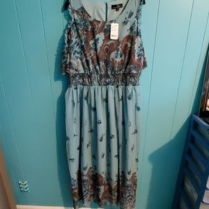 Nwt Suzanne Betro dress size 1xl